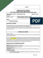 Equipo ejecutor+plan concertado de trabajo.docx