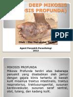 Deep Mikosis