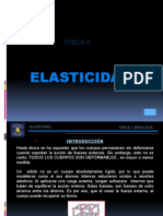 ELASTICIDAD(2013)