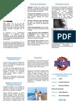 331653685-Triptico-El-Embarazo-Precoz-en-La-Adolescencia.pdf