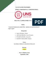Practica-2-materias-primas.docx