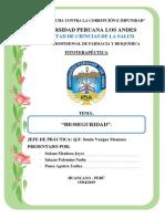 Informe 1 de Fitoterapeutica