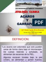 ACAROS Y GARRAPATAS 2016.ppt