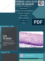 dispositivas 1 histologia