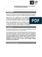 Areas de Oportunidad_problemas_2019.pdf