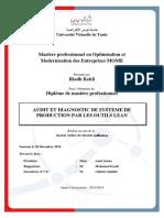 AUDIT_ET_DIAGNOSTIC_DE_SYSTEME.pdf