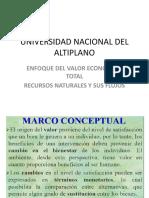VALORACION ECONOMICA TOTAL.pptx