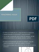 Fenomeno Agua[1]