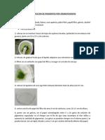 b Extraccion de Pigmentos Por Cromatografia