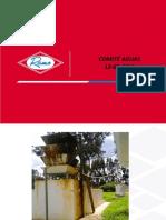 comite  aguas agosto 2015.pptx