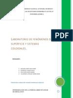 reporte-micelizacion.docx
