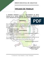 Certificado Trabajo Eduardo Yb(Región Amazonas)