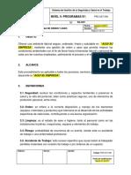 PRG-SST-008 Programa de Orden y Aseo