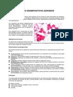 APUNTE+Cocos+Grampositivos.pdf microbiologia