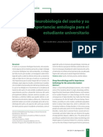 Fases del sueño.pdf
