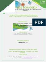 PASO 4_EDUCACION AMBIENTAL_REVISTA.docx