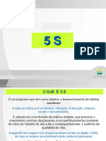 5s Petrobras.pps