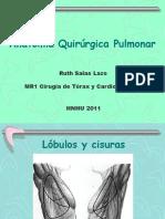62179259-ANATOMIA-QUIRURGICA.ppt