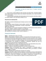 aeplv617_naus_ver_pinho_guiao.docx
