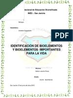 IDENTIFICACIÓN DE BIOELEMENTOS Y BIOELEMENTOS  IMPORTANTES PARA LA VIDA (Trabajo Formal).docx