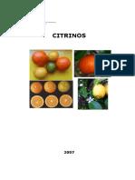 Citrinos.pdf