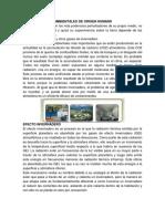 PERTURBACIONES AMBIENTALES DE ORIGEN HUMANO.docx