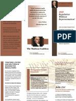 Regulation Freedom Amendment Flyer