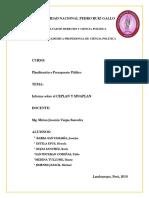 Informe Del Ceplan y Sinaplan Original
