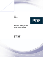 IBM Work Management.pdf