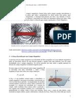 FFC - Campo Magnetico