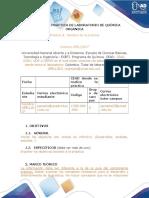 erika quimica organica pre informes.docx