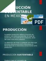 Producción Sustentable en México