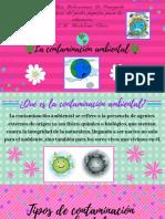 La contaminación ambiental (2).pdf