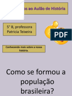 Formação Do Povo Brasileiro