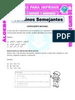 Terminos-Semejantes-con-coeficiente-natural-para-Quinto-de-Primaria.doc