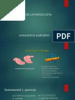 Dra Ampuero - Cirugía Laparoscópica