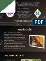 Producción del café