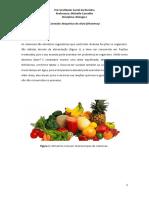 Aula 7- Bqm Das Células - Vitaminas