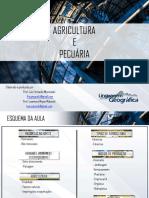 aula-agriculturaepecuria-140827183913-phpapp02.pdf