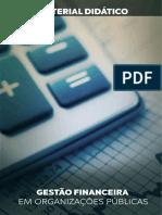 GESTÃO-FINANCEIRA-EM-ORGANIZAÇÕES-PÚBLICAS.pdf