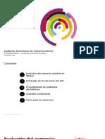 Auditorias Electronicas de Comercio Exterior - Deloitte