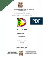 Silabo Cardio 2019 - i