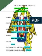 (3) DENSIDAD APARENTE- JESSICA ARANDA.docx