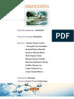 BIOLOGIA INFORME DISECCIÓN (1).docx