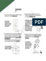 EL TRABAJO DE LOS CIENTÍFICOS SIGUE VARIAS ETAPA.docx