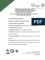 PLANTILLA DE PRUEBA PILOTO.docx