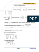 AutoExamen02Parcial (1)