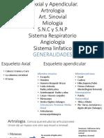 E. Axial y Apendicular.