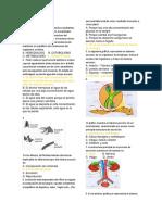 Evaluación biología séptimo.docx