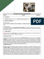 PyC Formato B Individual Bibliografía 2019 1